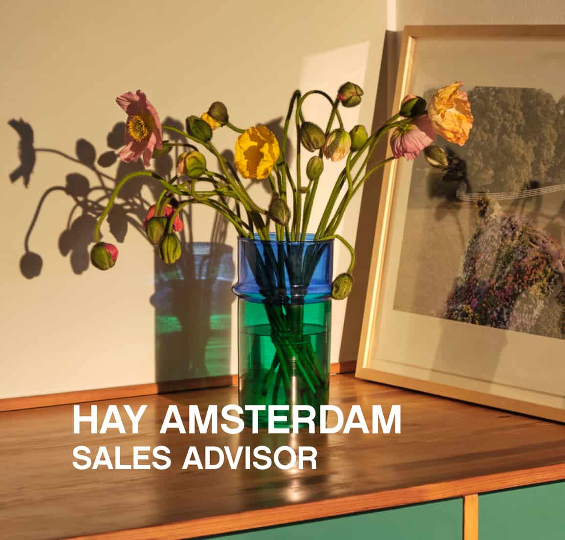 Vacature HAY House Amsterdam